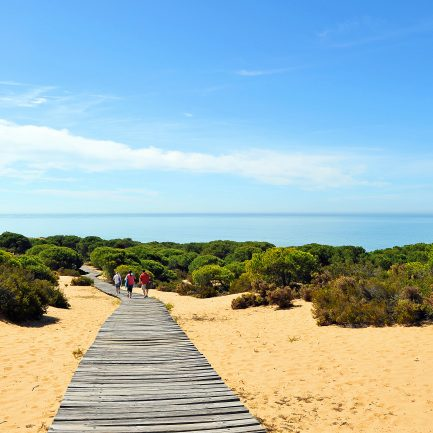 Paraje de Cuesta Maneli en el Parque Nacional de Doana, provincia de Huelva, Espaa