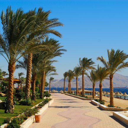 beautiful beach and ocean in sharm el sheikh, egypt